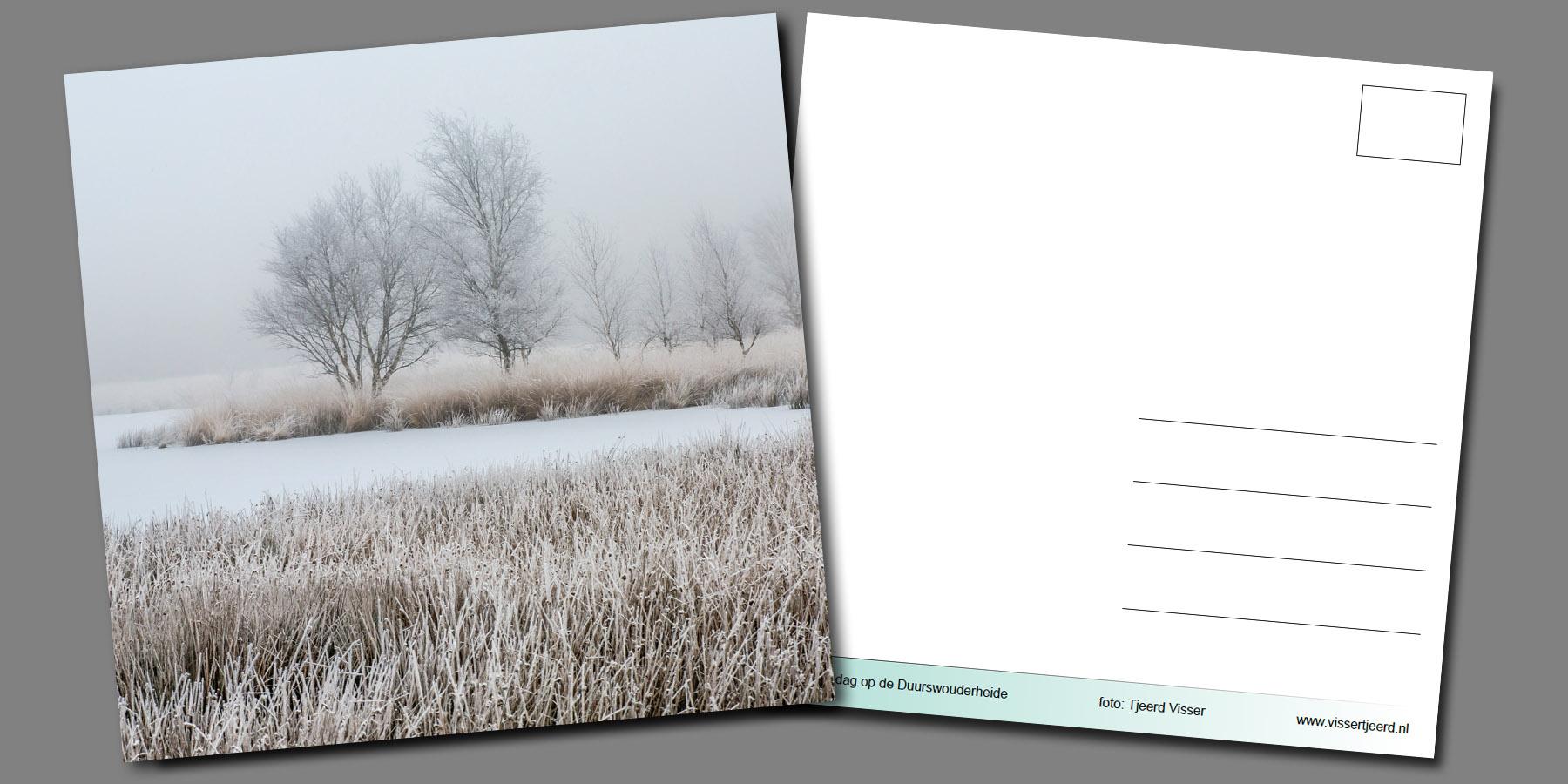 Ansichtkaart_Tjeerd_Visser_winter