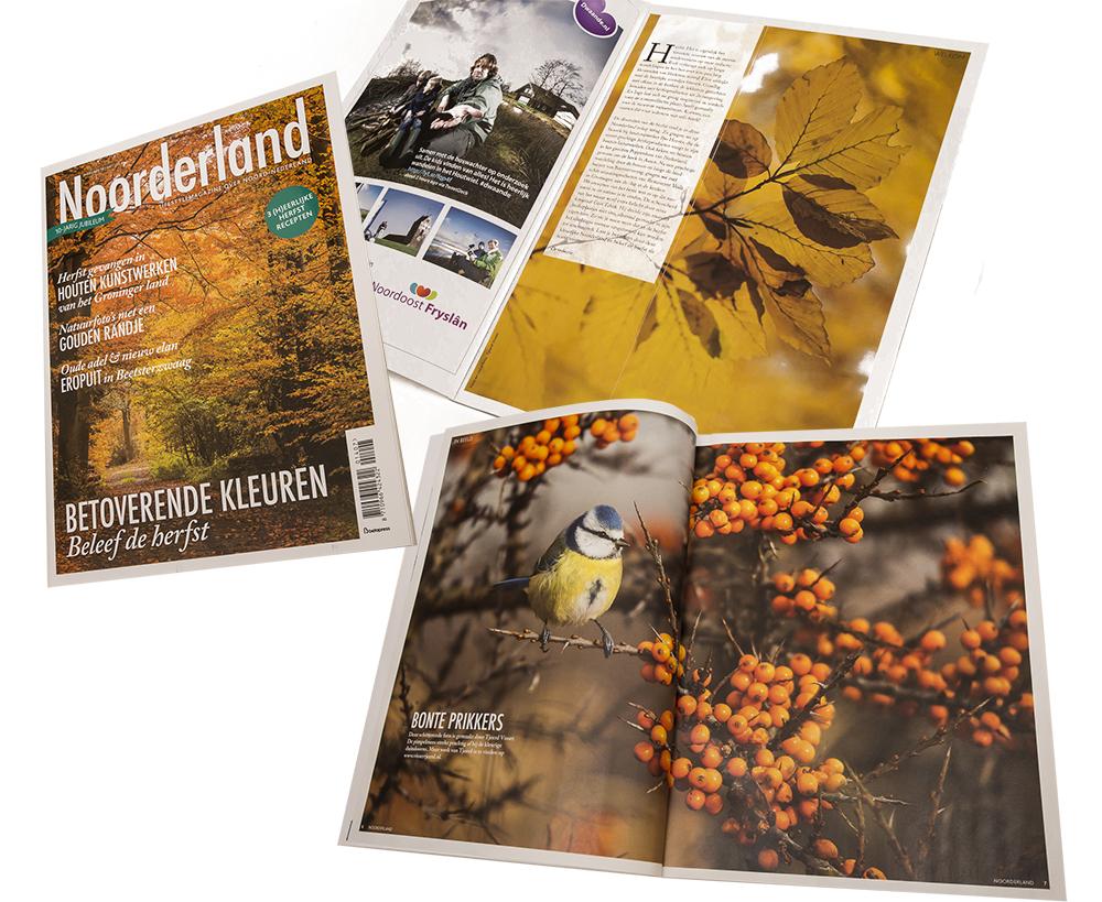 Cover-Noorderland-Herfst