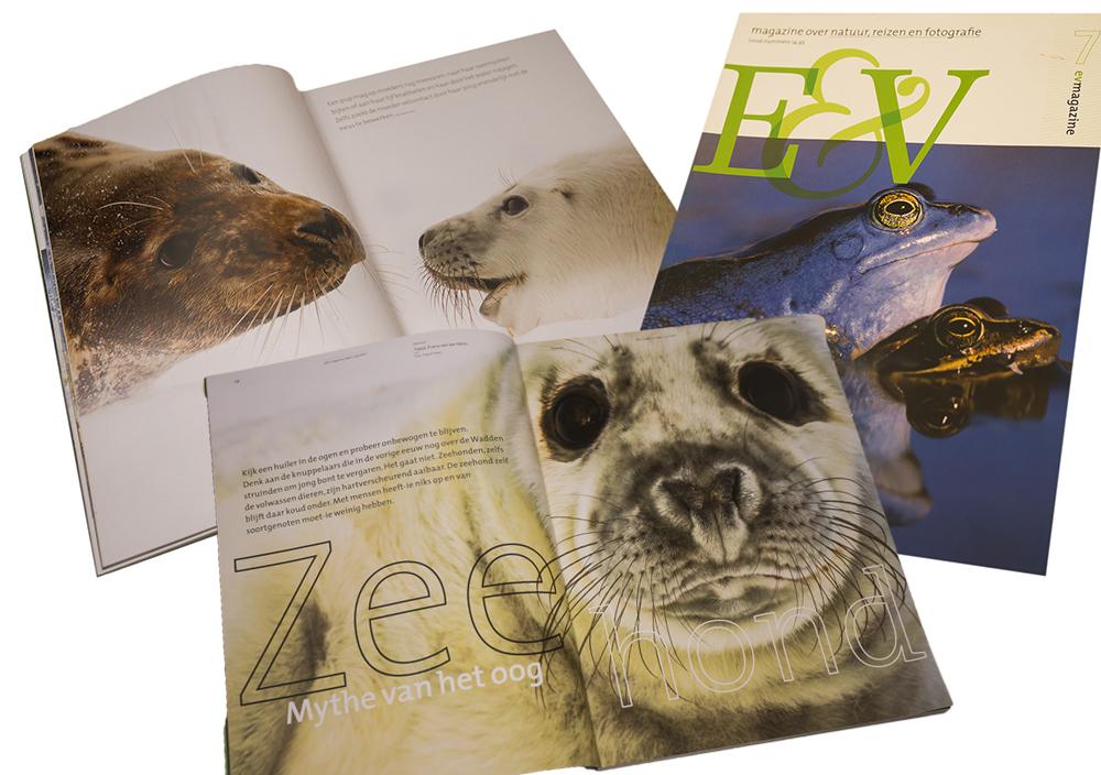 Publicatie E&V magazine Tjeerd Visser