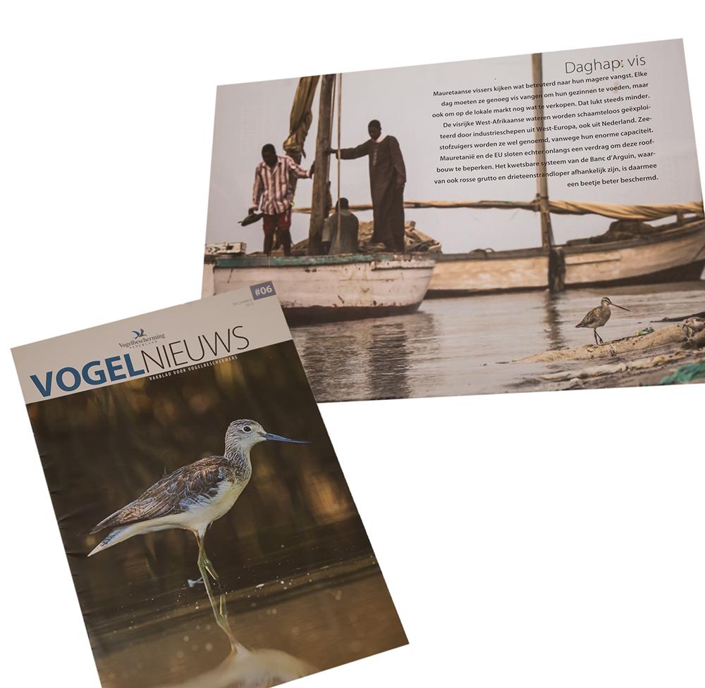 Vogel-Nieuws Vogelbescherming Nederland